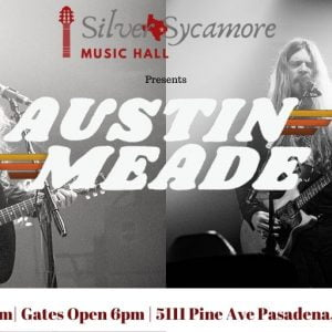 Austin Meade Concert in Houston